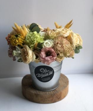 Цветы в ведре Саммер Драммер