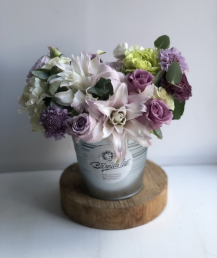 Цветы в ведре Кремона